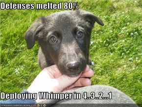 Defenses melted 80%  Deploying Whimper in 4..3..2...1