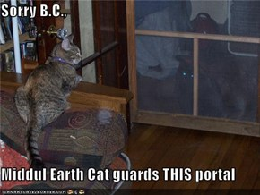 Sorry B.C.,  Middul Earth Cat guards THIS portal