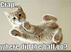 Crap...  where did the ball go?