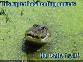 This water has healing powers  No, really, try it!!