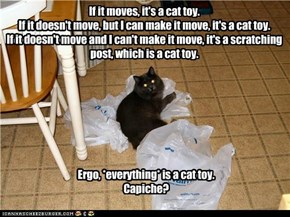 If it moves, it's a cat toy. If it doesn't move, but I can make it move, it's a cat toy. If it doesn't move and I can't make it move, it's a scratching post, which is a cat toy.