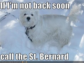 If I'm not back soon  call the St. Bernard