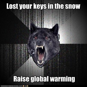 Lost your keys in the snow
