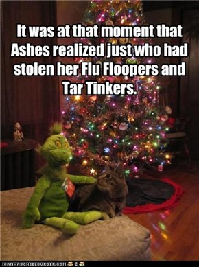 It was at that moment that Ashes realized just who had stolen her Flu Floopers and Tar Tinkers.