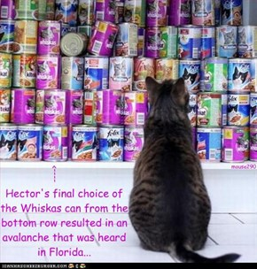 Hector's final choice of the Whiskas can from the bottom row resulted in an avalanche that was heard in Florida...