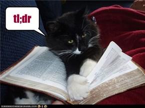 ceiling cat book = tl;dr