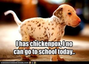 I has chickenpox