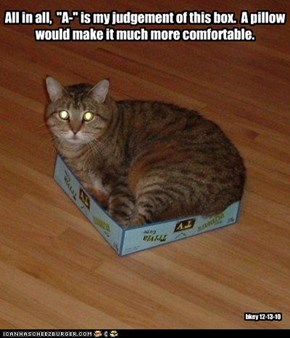 "All in all,  ""A-"" is my judgement of this box.  A pillow would make it much more comfortable."