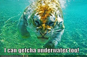 I can getcha underwater too!