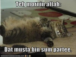 Teh mornin aftah:     Dat musta bin sum partee.