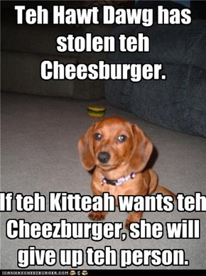Teh Hawt Dawg has stolen teh Cheesburger.