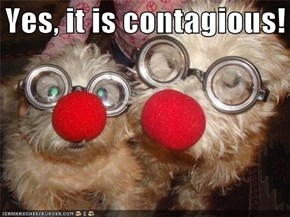 Yes it is contagious!
