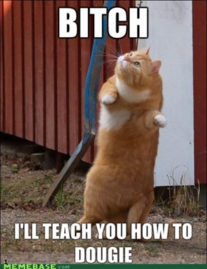 LOLcat TAKEOVER! The Dougie. I will teach you it.