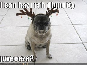 I can haz mah dignutty  pweeeze?
