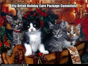 Itty Bitteh Holiday Care Package Commiteh