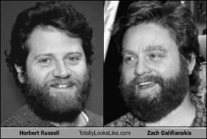Herbert Russell Totally Looks Like  Zach Galifianakis