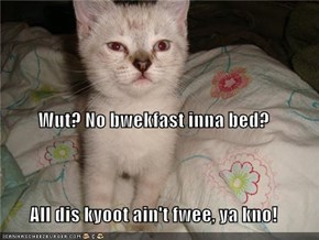 Wut? No bwekfast inna bed? All dis kyoot ain't fwee, ya kno!