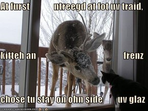 At furst             ntreegd at fot uv traid, kitteh an                                               frenz chose tu stay on ohn side        uv glaz