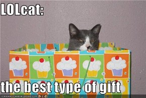 LOLcat:  the best type of gift