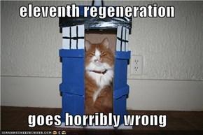 eleventh regeneration  goes horribly wrong