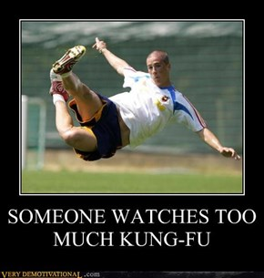 SOMEONE WATCHES TOO MUCH KUNG-FU