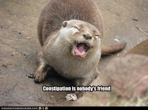 Constipation is nobody's friend