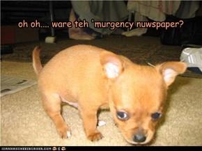 oh oh.... ware teh 'murgency nuwspaper?
