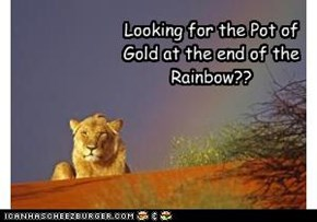 Looking for the Pot of Gold at the end of the Rainbow??