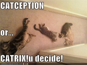 CATCEPTION or... CATRIX!u decide!