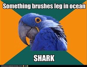 Paranoid parrot ocean