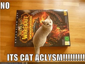 NO       ITS CAT ACLYSM!!!!!!!!!!!!!
