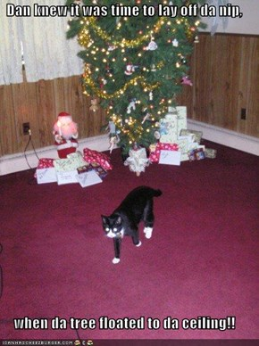 Dan knew it was time to lay off da nip,  when da tree floated to da ceiling!!