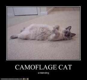 CAMOFLAGE CAT