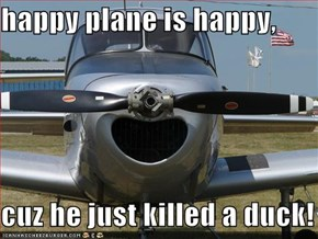 happy plane is happy,  cuz he just killed a duck!