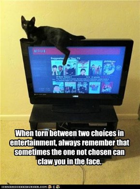 When torn between two choices in entertainment, always remember that sometimes the one not chosen can claw you in the face.