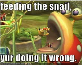 feeding the snail,  yur doing it wrong.