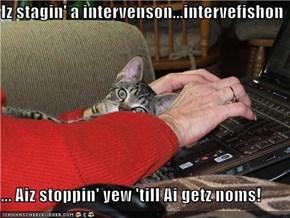 Iz stagin' a intervenson...intervefishon  ... Aiz stoppin' yew 'till Ai getz noms!