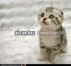 ai can haz