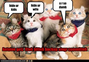 hide your cats
