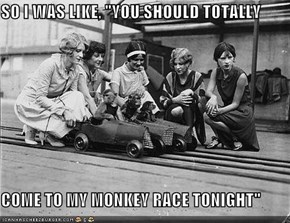 It's Not A Party Unless There's Monkey Racing