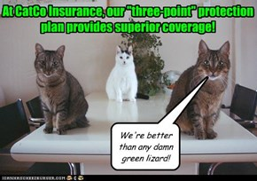 "At CatCo Insurance, our ""three-point"" protection plan provides superior coverage!"