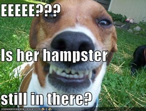 EEEEE??? Is her hampster still in there?