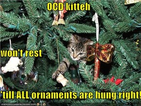 OCD kitteh won't rest  'till ALL ornaments are hung right!