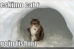 eskimo cat r  goin fishinz