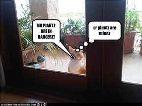 UR PLANTZ ARE IN DANGERZ!