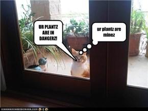 UR PLANTZ ARE IN DANGERZ!