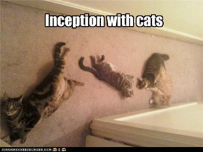 Inception with cats