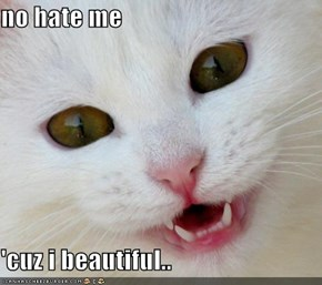 no hate me   'cuz i beautiful..