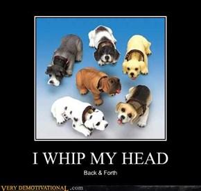I WHIP MY HEAD