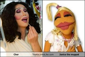 Cher Totally Looks Like Janice the muppet